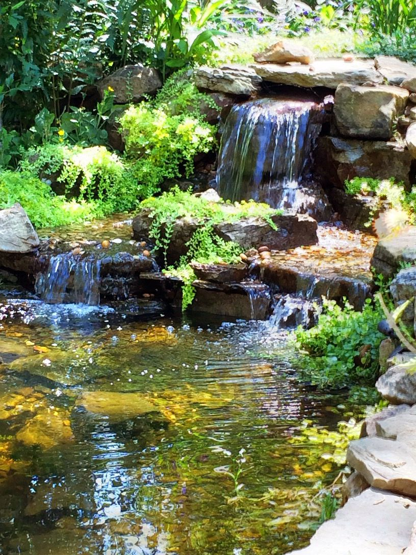 Simple & Beautiful! | Backyard water feature, Sustainable ...