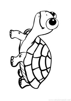 Kaplumbaga Boyama Sayfasi Kaplumbaga Hayvan Boyama Sayfalari