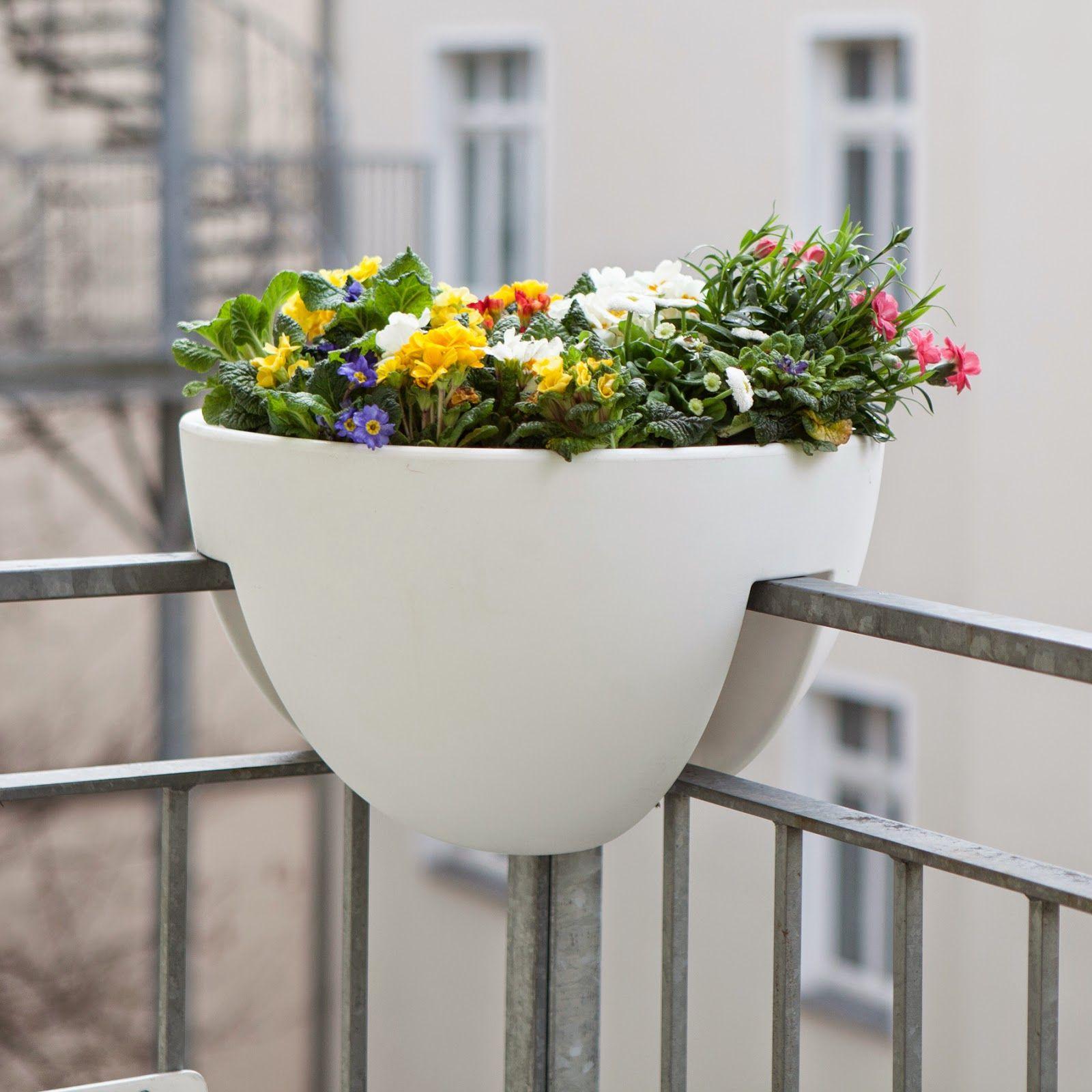 Stunning Eckling The first planter for the balcony corner der erste Blumenkasten f r die Balkonecke