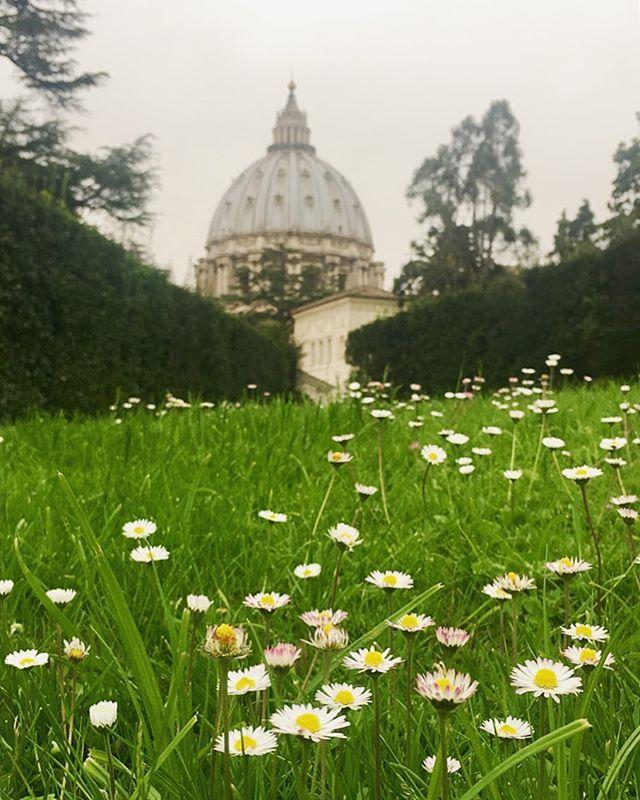 Visiting Vatican City (con Immagini)