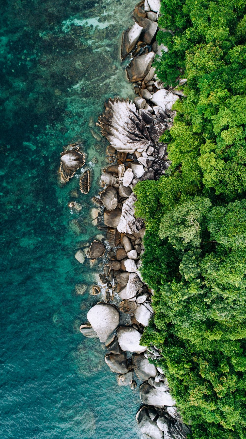Beautiful Beach Pulau Tioman Malaysia Found On Unsplash The Man Droneview Beach Cool Backgrounds For Iphone Best Nature Wallpapers Free Iphone Wallpaper