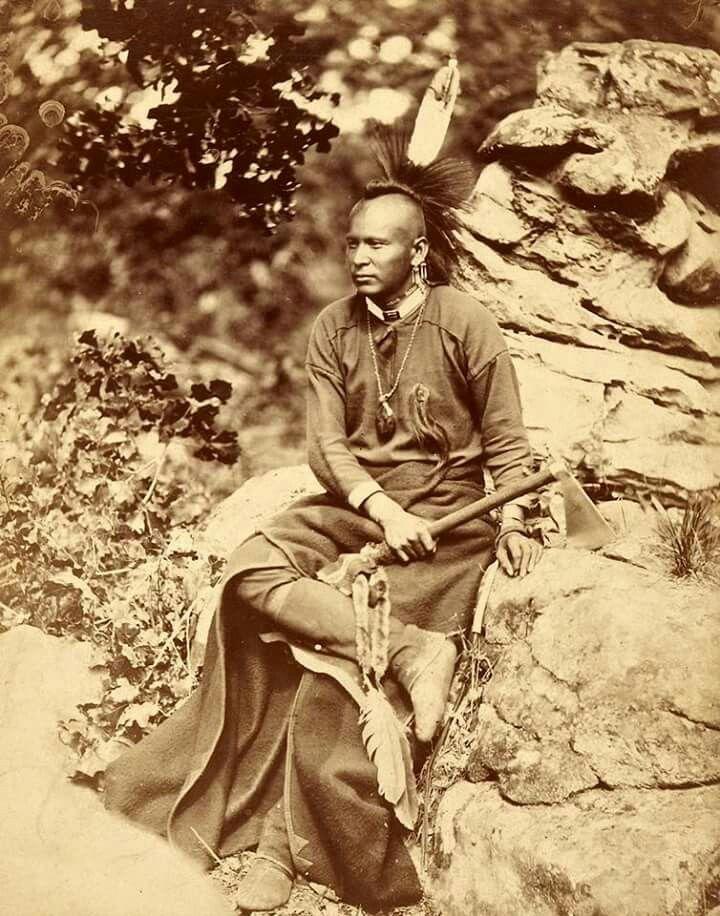 Apple Tree. Pawnee. 1875. Photo by John K. Hillers