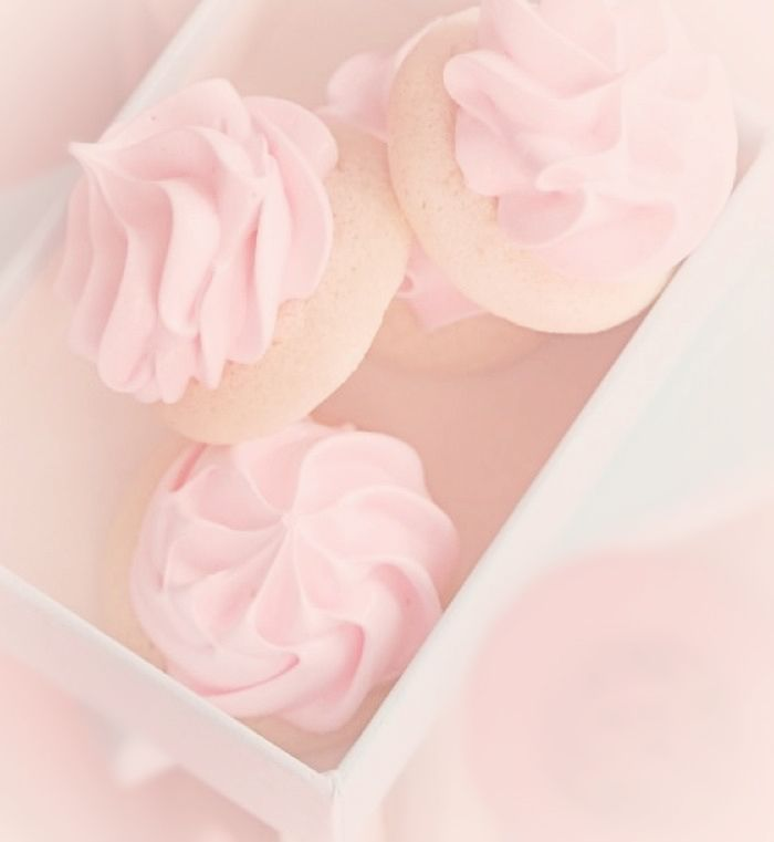 ♡ xo, Blush ♡