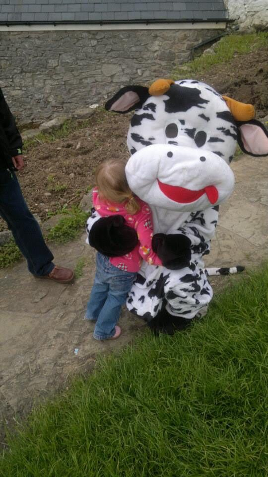 Daisy the cow.