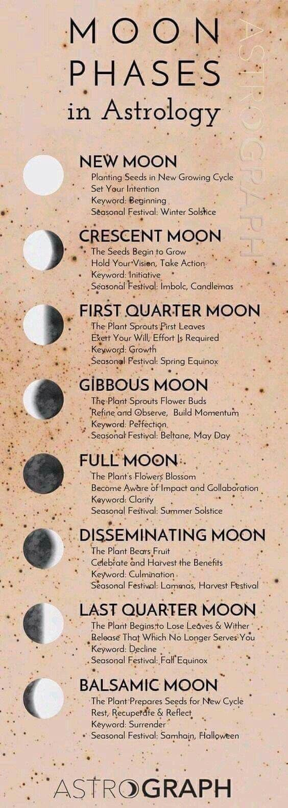 Moon Phases in 20 With images   Moon astrology, Astrology ...