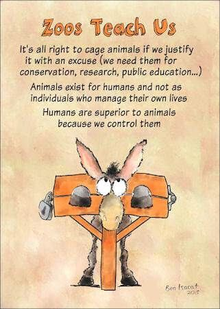 Are Zoos A Necessary Evil Animal Rights Quotes Animal Rights Animal Activism