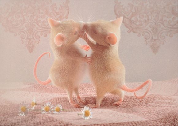 Say it with flowers - Say it with mice! Postcard with my illustration on DaWanda #illustration #postcard #animals #mouse #zurkleinenmaus