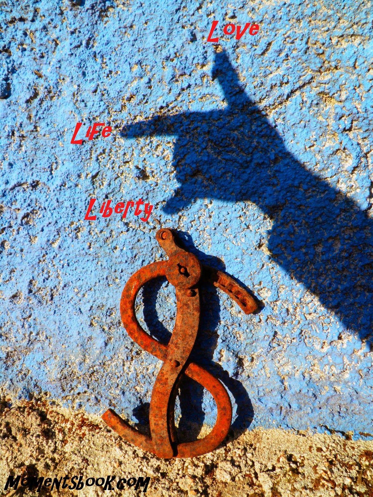 Momentsbook.com: Liberty-Life-Love!!! (Original Dollar Handcuffs)
