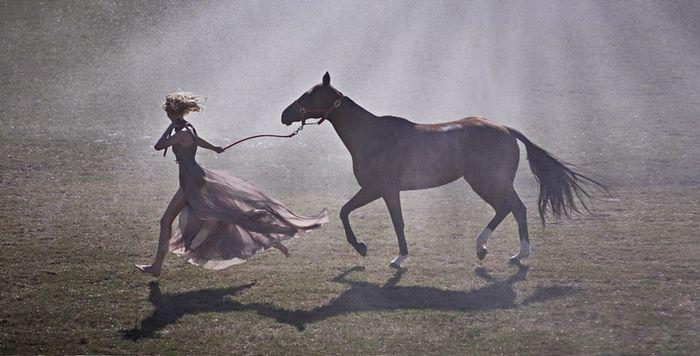 vogue лошадь: 13 тыс изображений найдено в Яндекс.Картинках