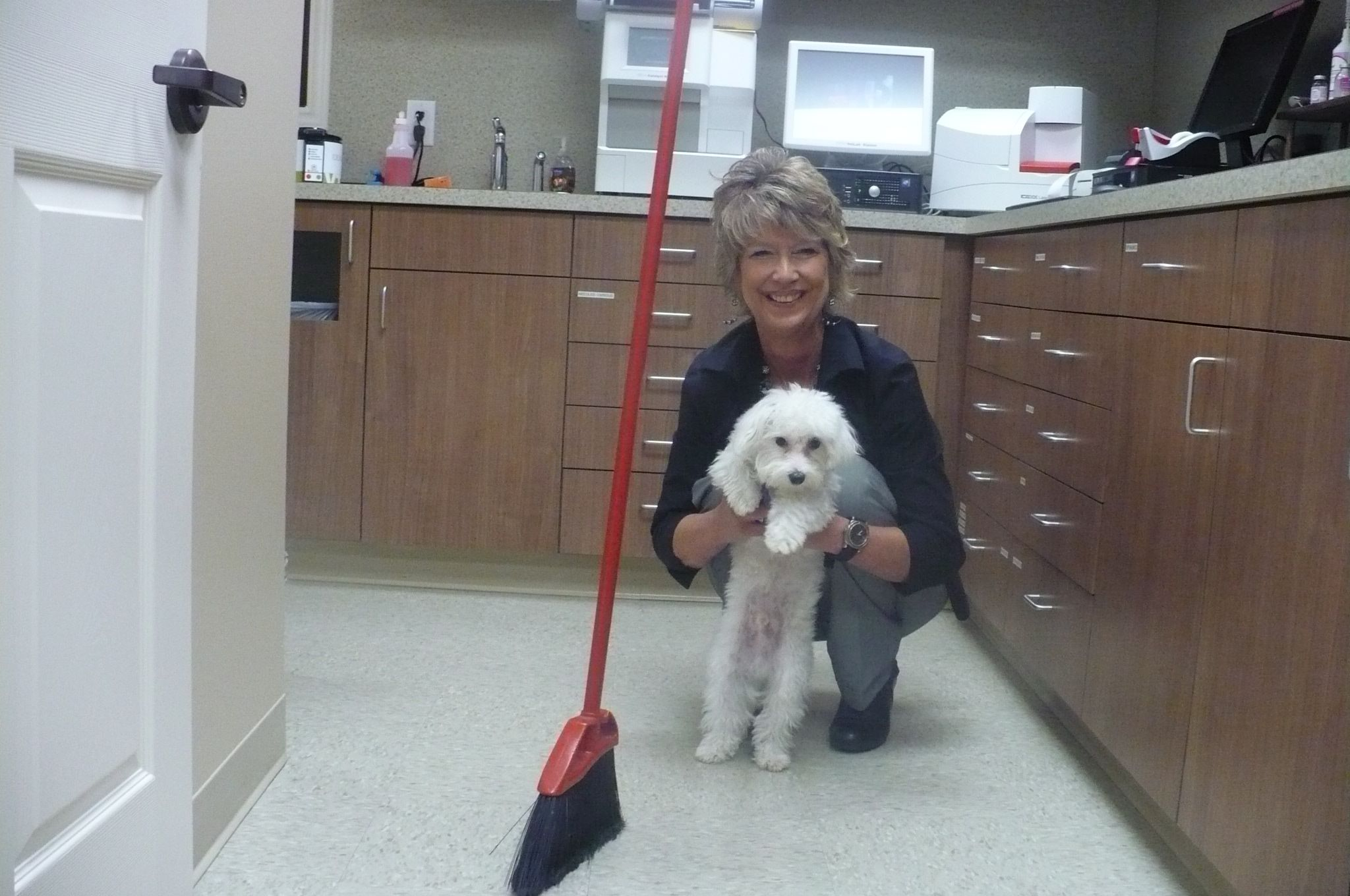 Best dogs by Shadow Creek Veterinary Clinic on Amazing