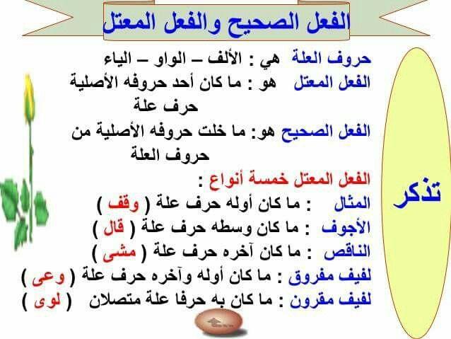 الفعل الصحيح والفعل المعتل | Learning arabic, Learn arabic language, Arabic  language