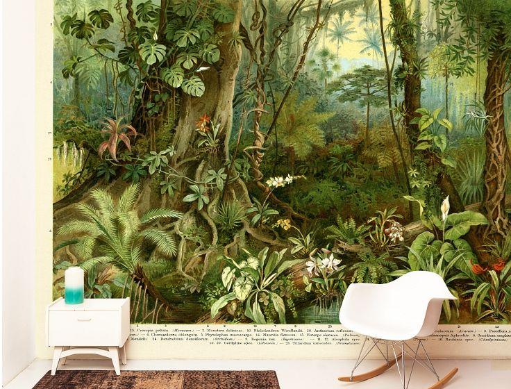 Tropisch Regenwoud Custom Sized Wallpaper Naturalis