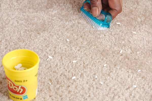 How To Get Play Doh Out Of Carpet Carpet Stains Best Carpet Cleaning Companies Diy Carpet
