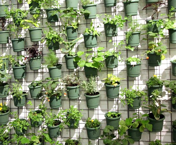 Valcucine Surface Notcot Vertical Herb Garden Verticle