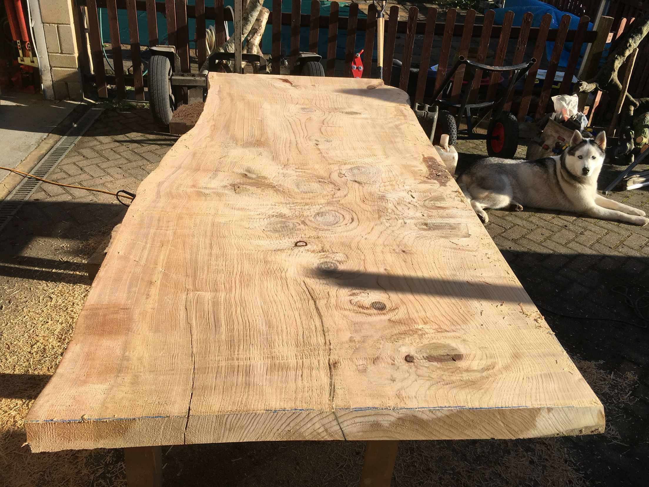 Western red cedar table top western red cedar live edge table top - Live Edge Table Top Cedar Of Lebanon Slab Being Trimmed Alaskan Milled