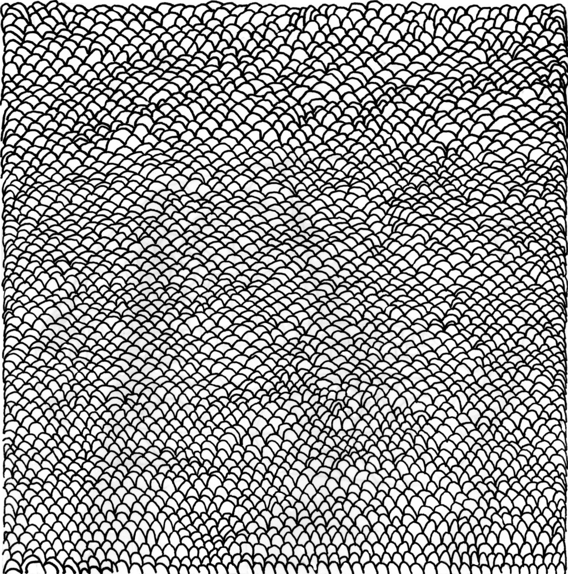 Handdrawn Dragon Scale Texture By Bisected8 Png 1878 1900 How To Draw Hands Dragon Scale Texture