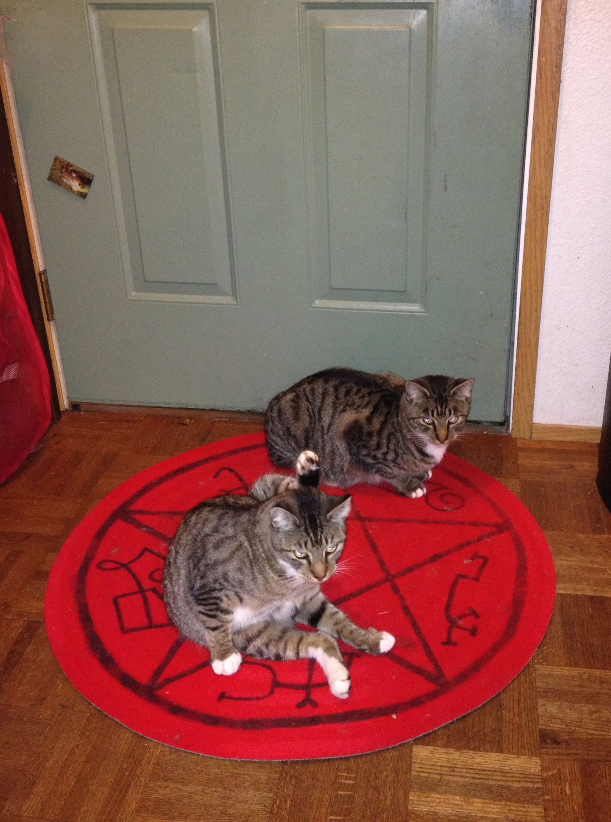 The Ikea Rug I Painted For My Supernatural Party It Was Perfect A Devil S Trap And Too
