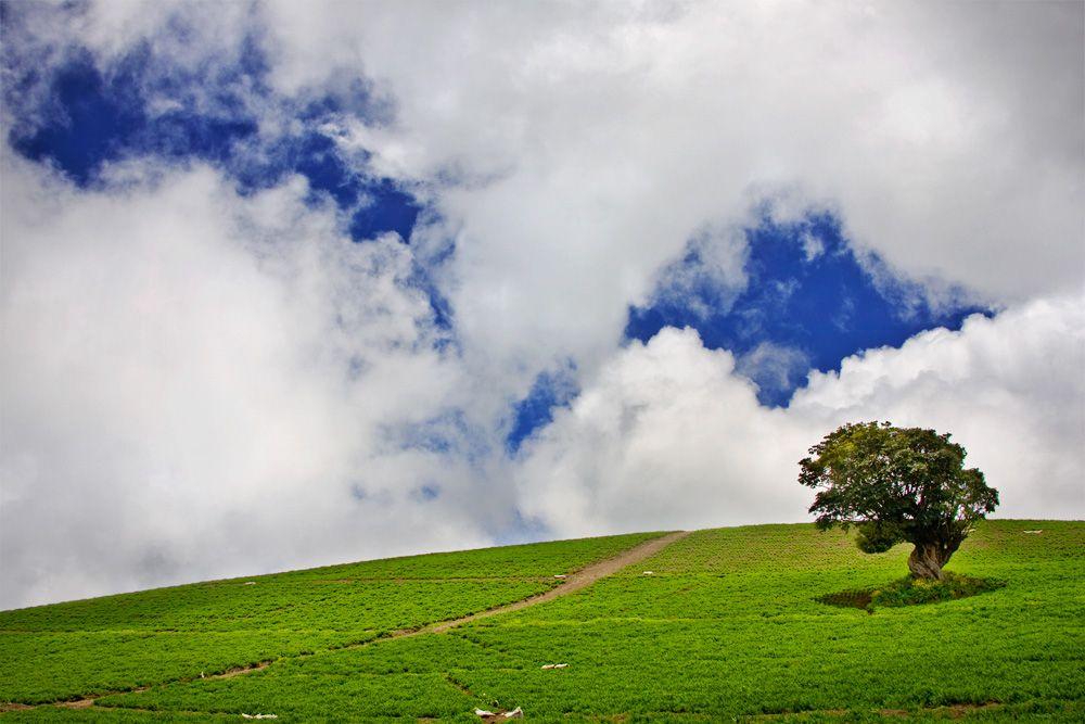 #clouds #sky #tree #landscape #costarica