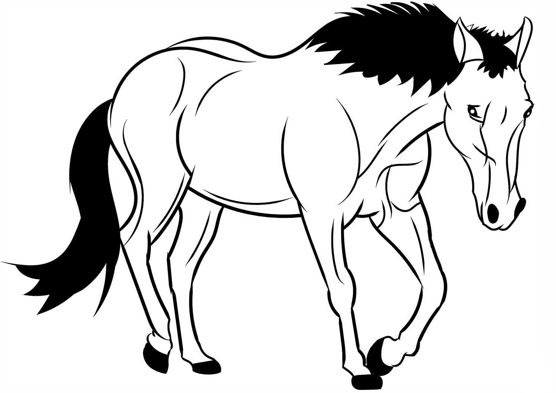 Horse Coloring Page Horse Coloring Pages Horse Coloring Horse Coloring Books [ 1059 x 1498 Pixel ]