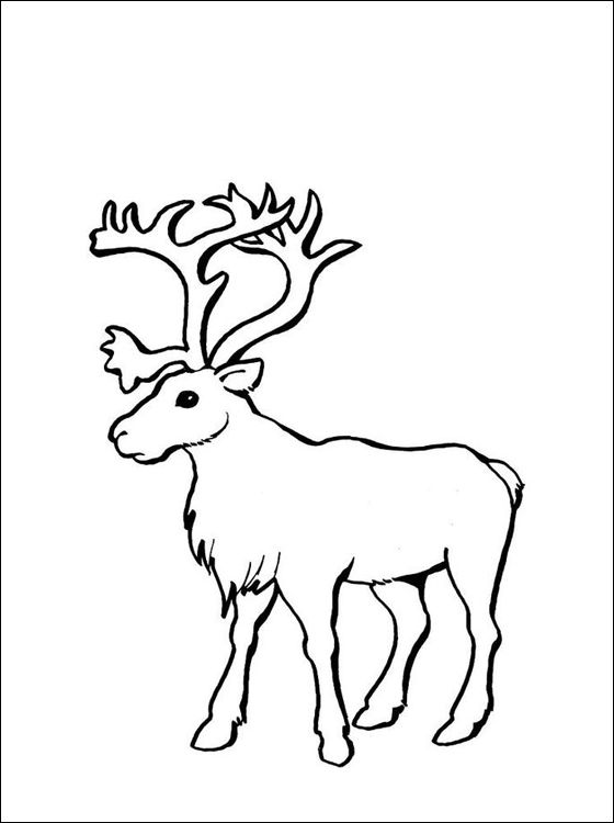 Reindeer Coloring Page Coloring Pages Crafts Embroidery Ideas
