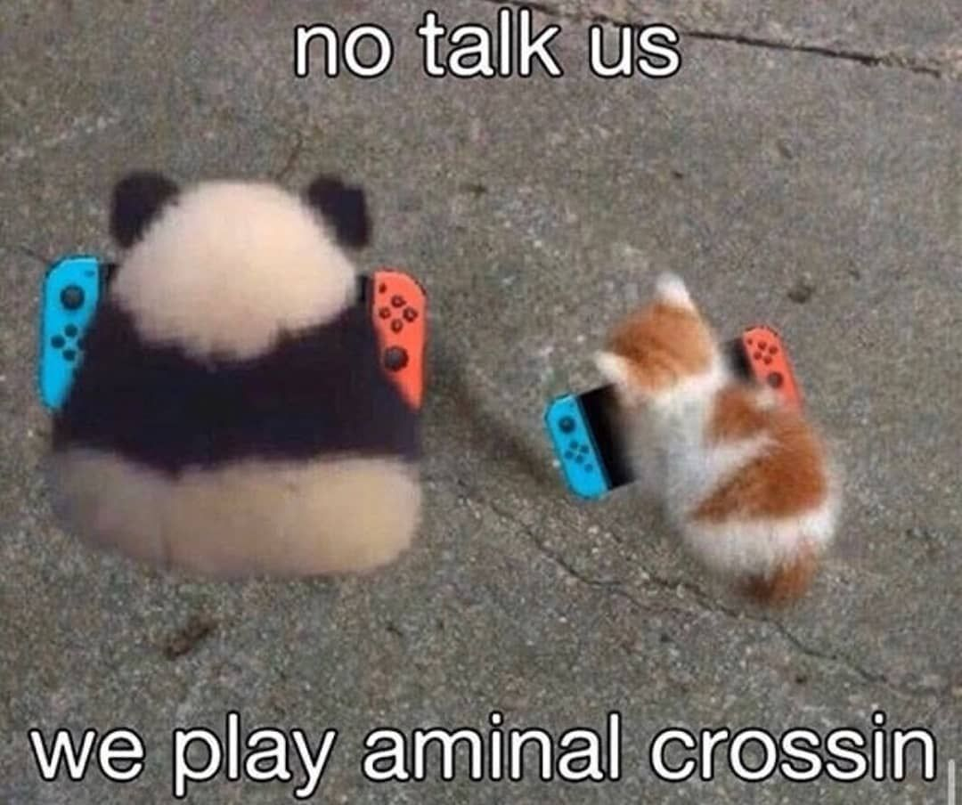 15++ Animal crossing how to get rid of villagers images