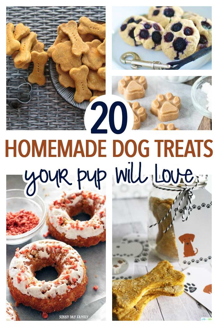 20 Simple Homemade Dog Treats Your Pup Will Love Homemade dog Pup