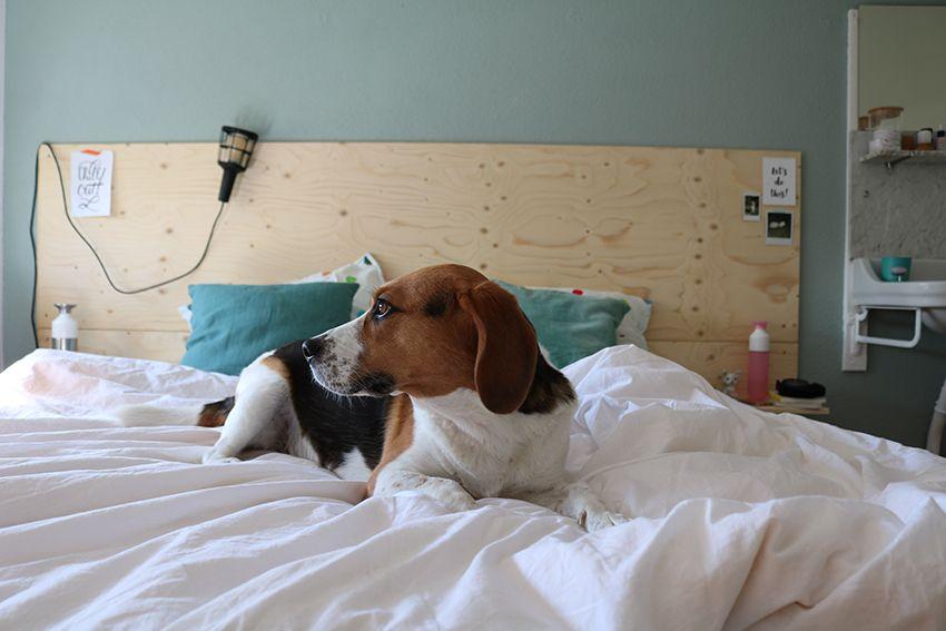 Image result for hoofdbord diy slaapkamer pinterest bedrooms