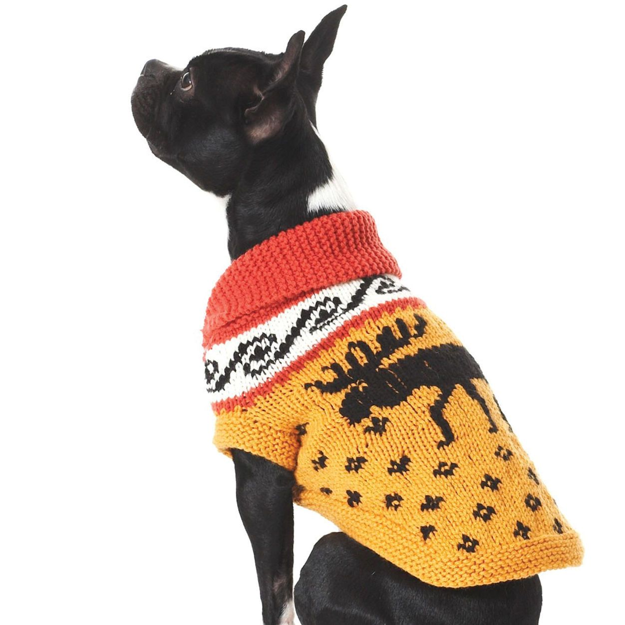 Bernat Cowichan Style Dog Coat, S | Dog coat pattern ...