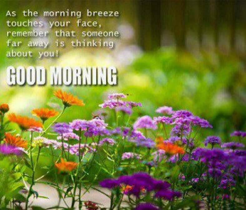 Pin By Jenny Palacios On Good Morning Pinterest Good Morning