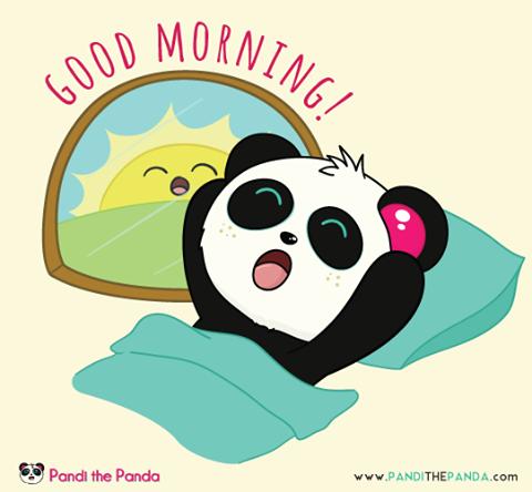 Facebook Cute Panda Wallpaper Baby Panda Bears Panda Love