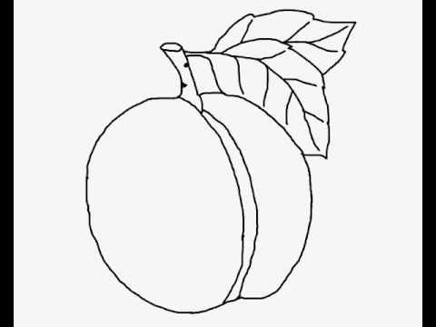 How To Draw A Peach Drawing