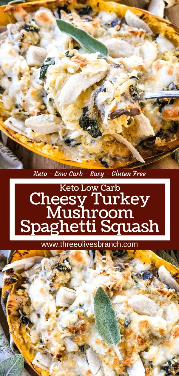 Photo of Keto Low Carb Cheesy Mushroom Turkey Spaghetti Squash – Three Olives Branch