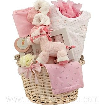 Newborn baby girl gift basket More