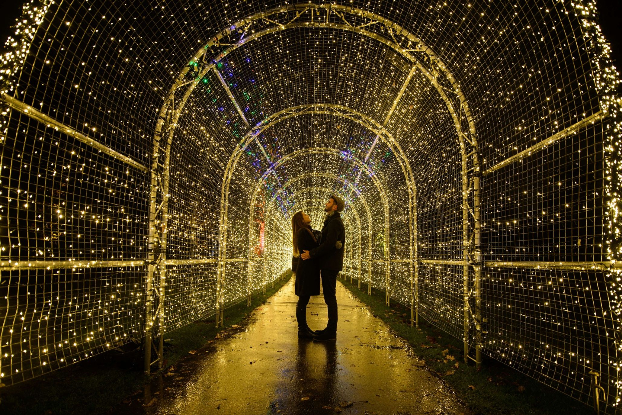 Photo Highlights Of The Day Christmas Lights Best Christmas Lights Kew Gardens Lights