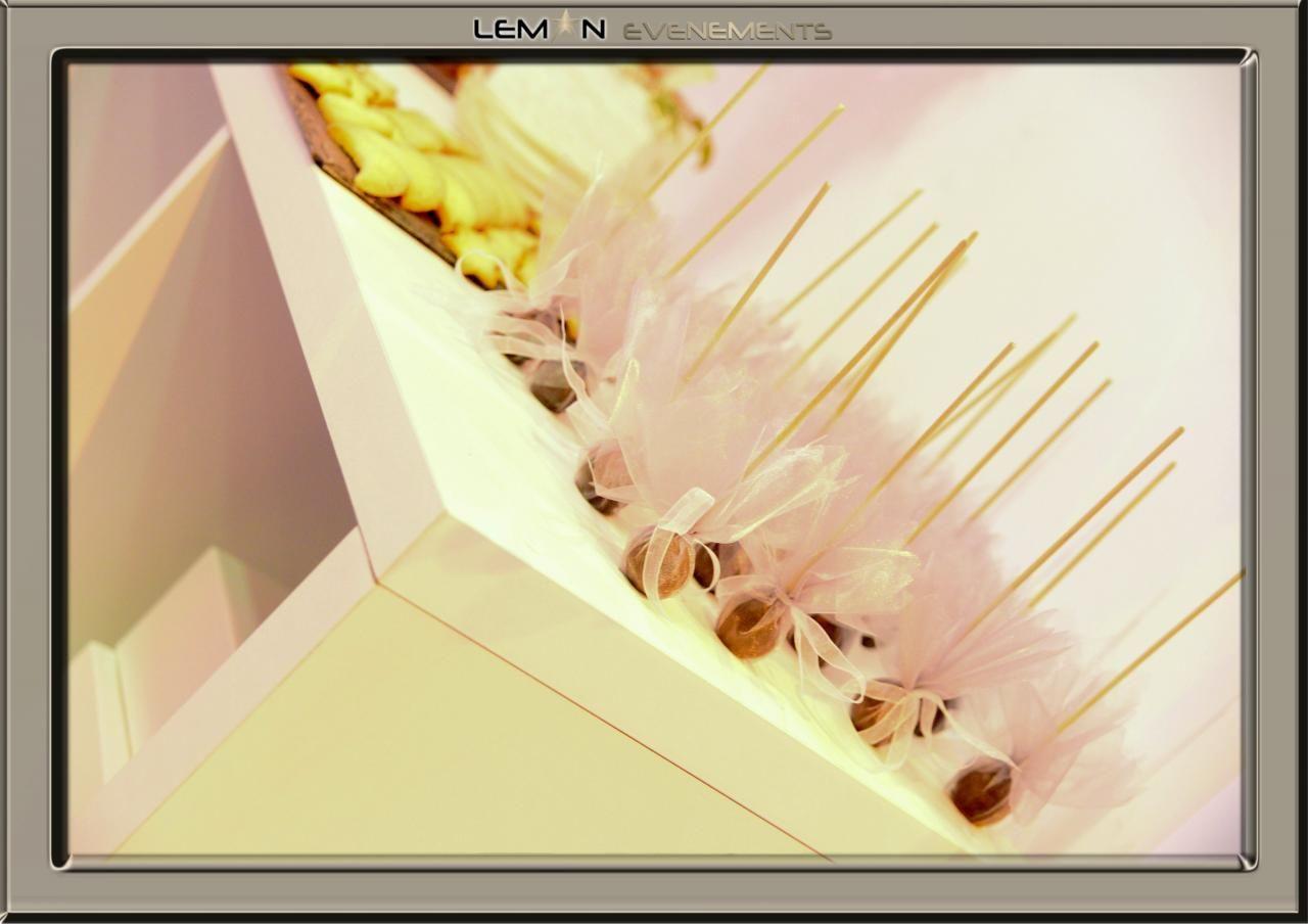 Stand salon du mariage 2012 de Léman Evènements 15