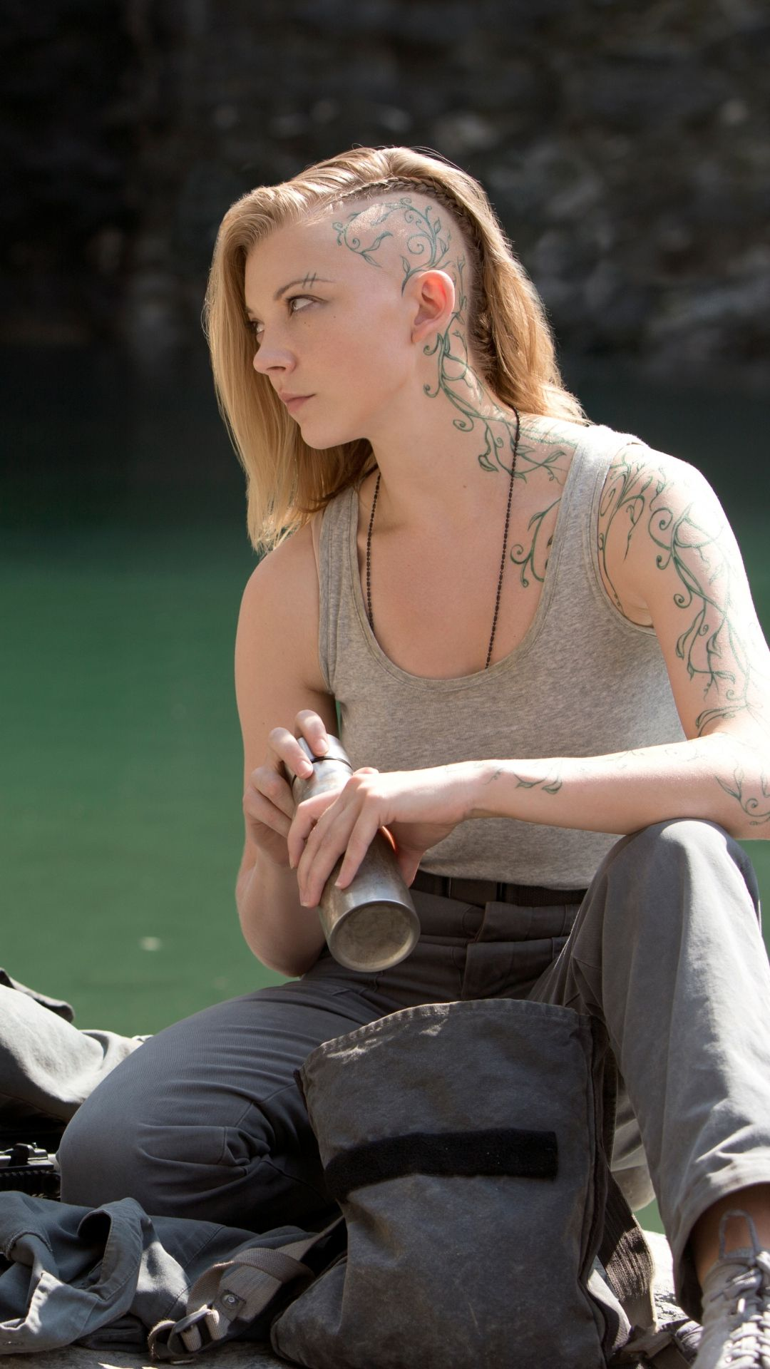 Discussion on this topic: Scarlett johansson ass, natalie-dormer-nude-boobs-and-tattooed-body/