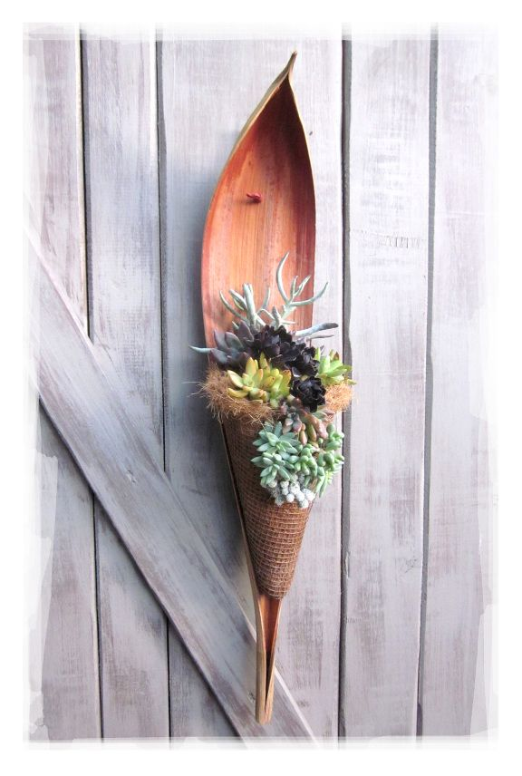 A great idea to use those gorgeous palm scoops from Queen palm trees. Four major components go into this project: a palm scoop, metal mesh screening, coconut fiber hanging plant liner and an array of small, colorful succulents.  For succulents, visit: https://shop.cacti.com/landscape-succulents/ #succulents_SerraGardens