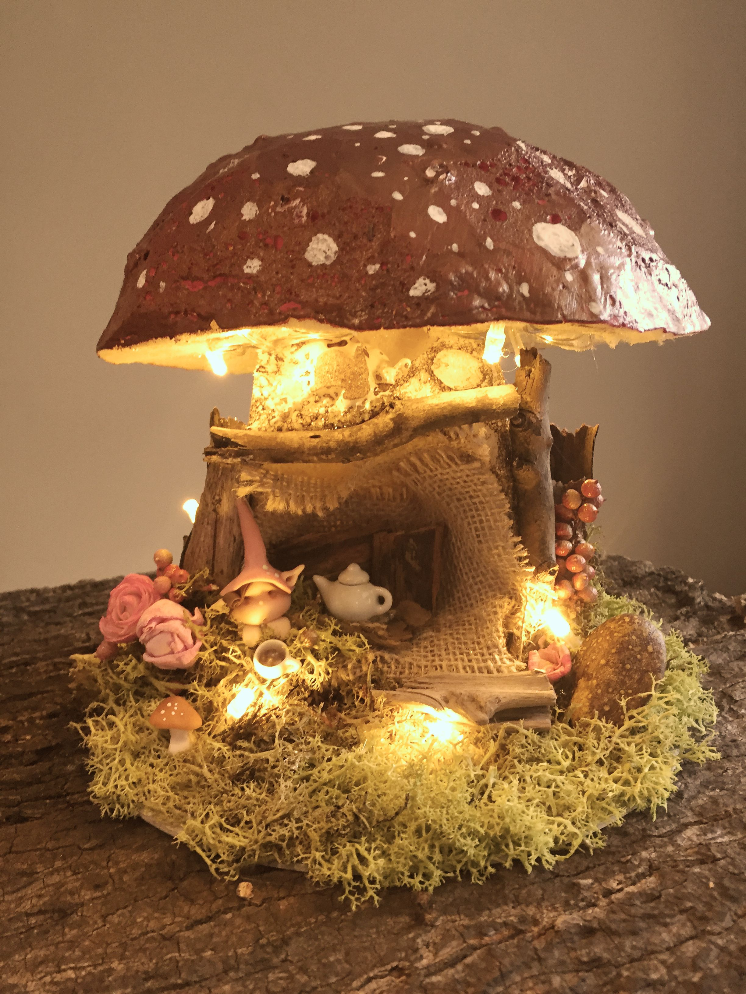 Fairy Mushroom House Use One Half Of A Coconut For The Top