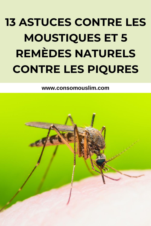Moustiques: 13 façons de les garder à l'écart et 5 remèdes contre les piqûres   – Green lifestyle