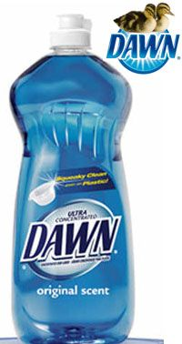 Can You Wash Your Dog With Dawn Dish Detergent When Cleaning Out Your Glider S Cage Which You Should Do At Least Once A Month Use Only Dawn Dish Soap Dawn Dish Soap Flea Bath For Dogs Cleaning