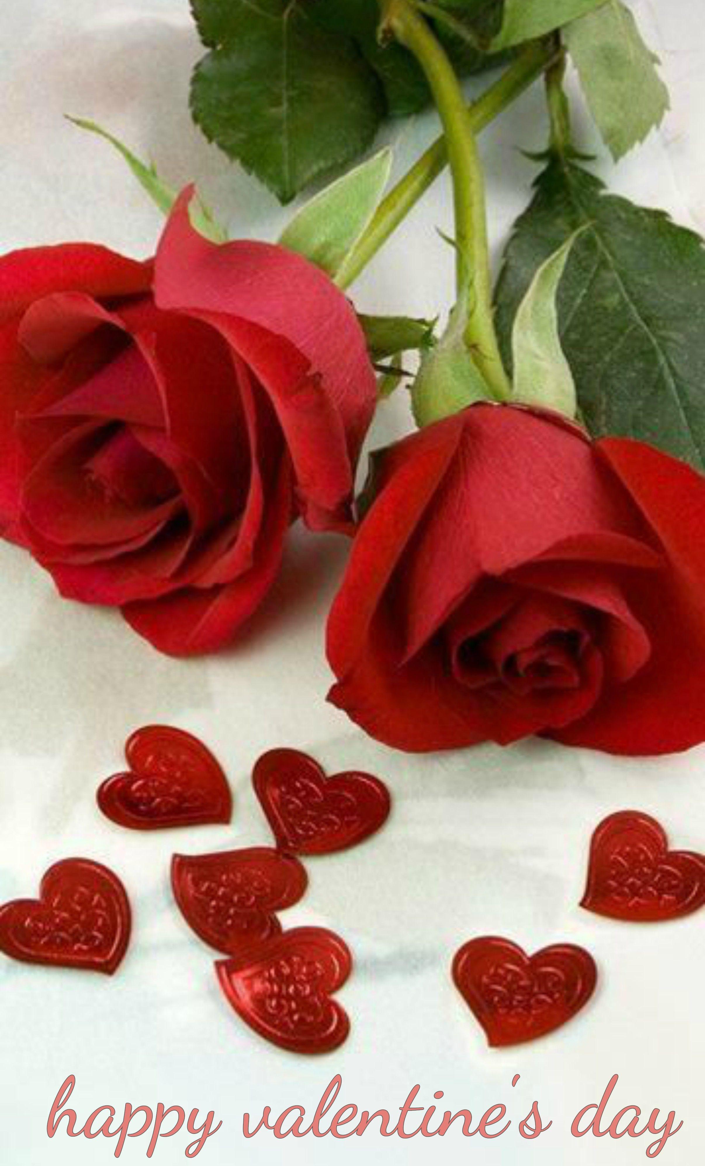 Happy valentines day happy valentines pinterest happy valentines day izmirmasajfo Images