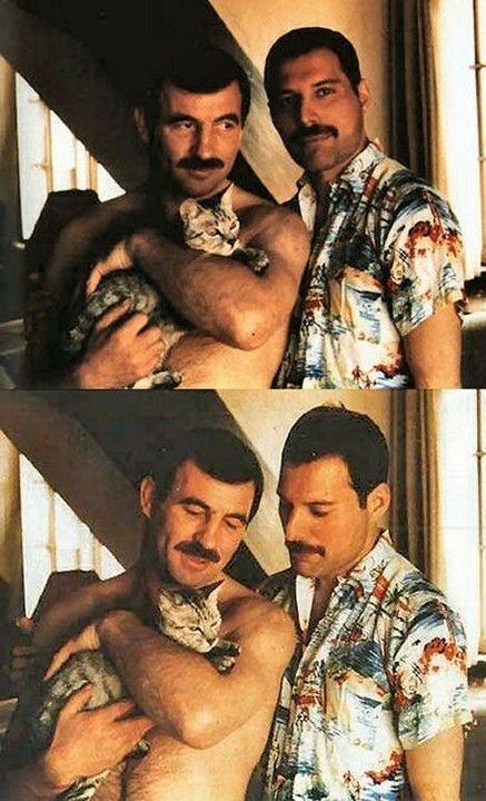 IMÁGENES Y MEMES YAOI (VOL. II) - Freddie Mercury y Jim Hutton I