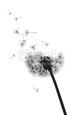black and white dandelion with flying seeds vector illustration style tattoos pinterest. Black Bedroom Furniture Sets. Home Design Ideas