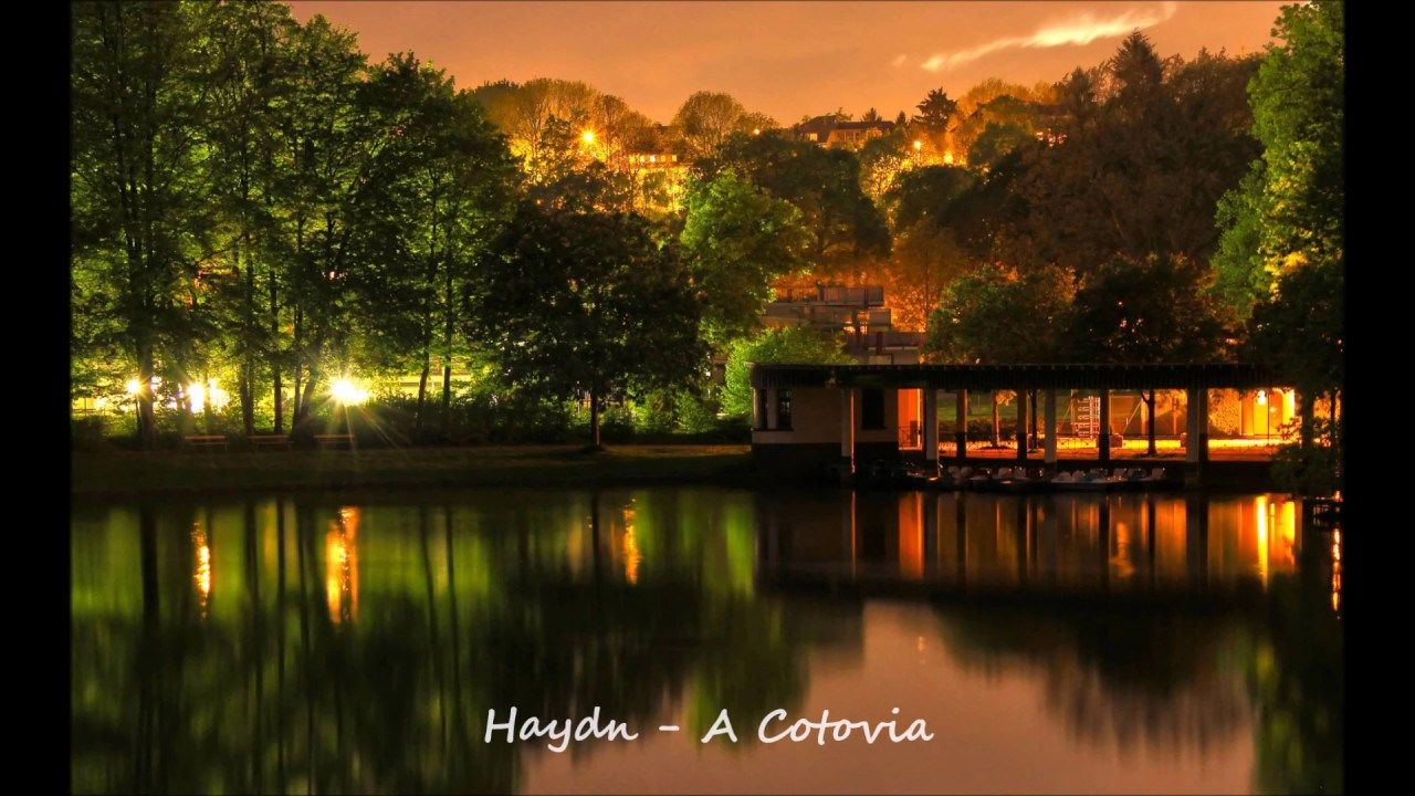 Haydn u2013 A Cotovia  Classical Music  Hd nature wallpapers