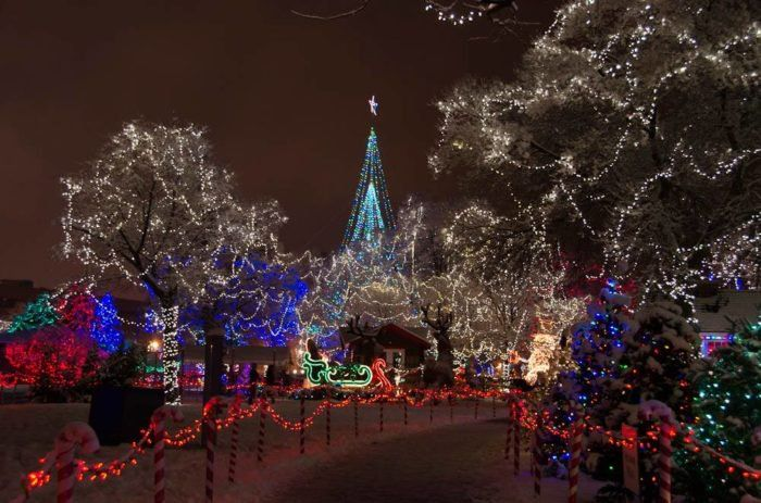 Take An Enchanting Winter Walk Through La Crosse S Rotary Lights In Wisconsin Christmas Town Lights Christmas Lights