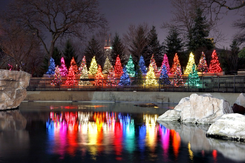 c3d1dc71682f5862b03ff51e8bed5ece - Botanical Gardens Garden Lights Promo Code