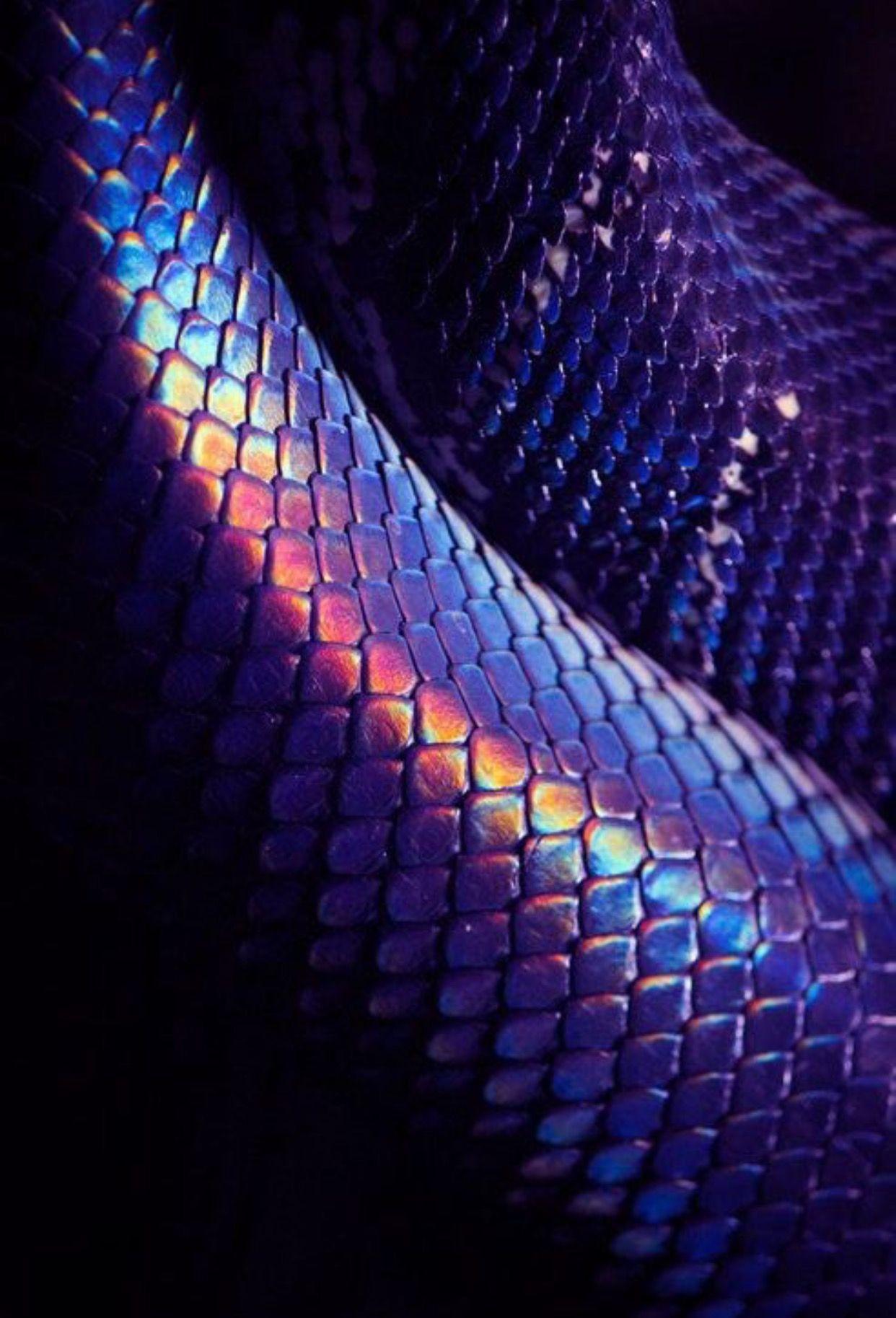 Pin By Romans Teresins On Like Purple Aesthetic Purple Snake