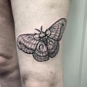 ebd84a1b0 Blackwork Moth Tattoo by David Mushaney Rebel Muse Tattoo, Moth Tattoo,  Lion Tattoo,