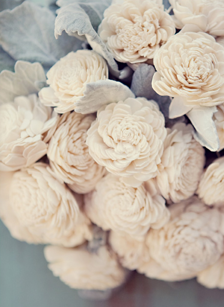 Whittens In The Woods Fleurs En Bois Fleurs Blanches Fleur Amour