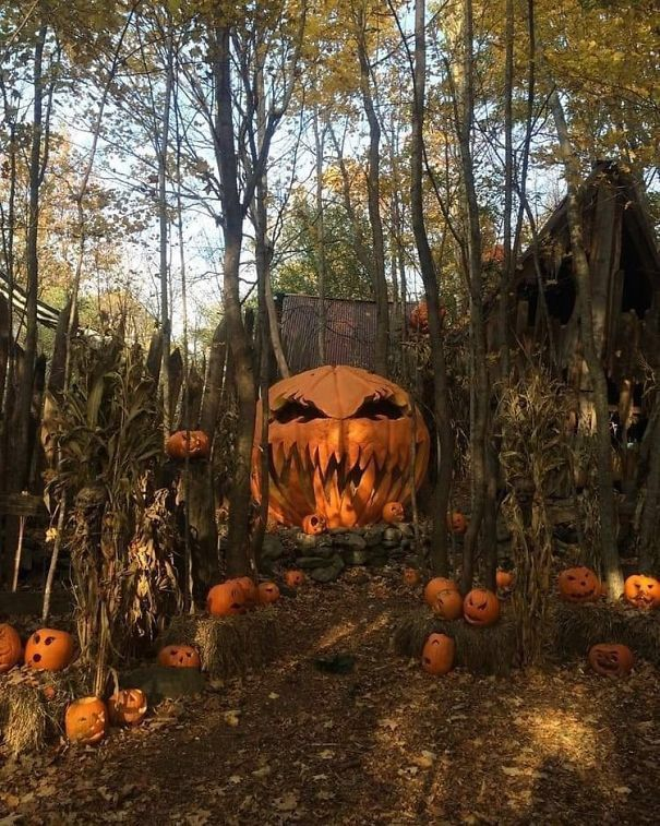 33 Halloween Decorations That Will Remind You You're Already Late